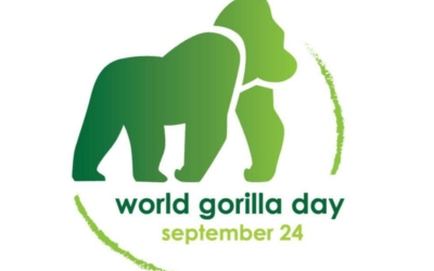 World Gorilla Day