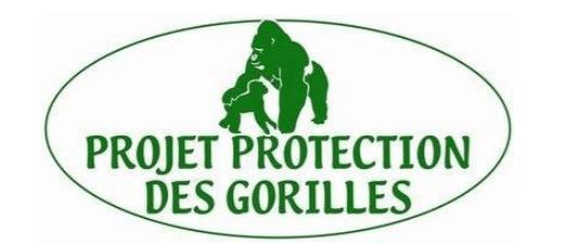 Projet Protection des Gorilles